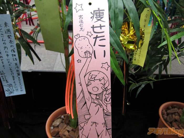 今年第6回。JR秋叶原站<物语>系列的七夕展示「声优们的愿望很有个性的啊」- ACG17.COM