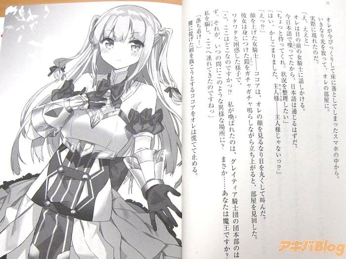 轻小说 女骑士Collection/女骑士これくしょん「基本免费的享受和女骑士的同居幻想作」 - 轻小说, ACG - ACG17.COM