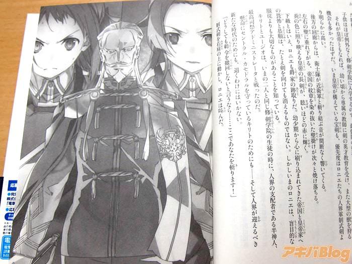 ソードアート・オンライン20巻 「もう一度《戦争》が起きる…!ムーンクレイドル编完结!」 - ACG17.COM