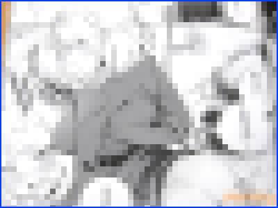 サークルナイロン100%(ナイロン氏)の冬コミ新刊・アズレン同人誌「PRIANA」