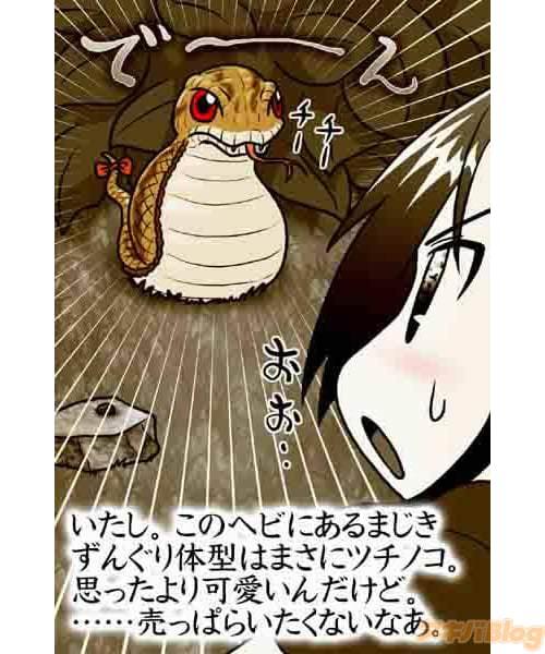 あの有名な未確認生物「ツチノコ」も満を持して登場! 毒を持っているとかいないとか・・・?謎が謎を呼びます!!