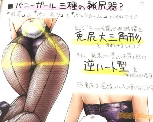 """バニーガール三種の尻器?「""""尻尾""""と""""バニースーツ""""と""""バックシーム""""がそれです!」"""