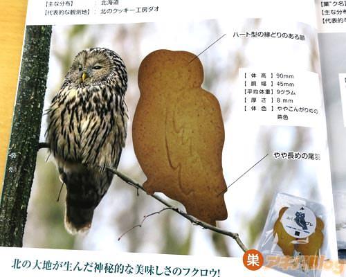 ふくろうサブレ(北海道)「北の大地が生んだ神秘的な美味しさのフクロウ!」