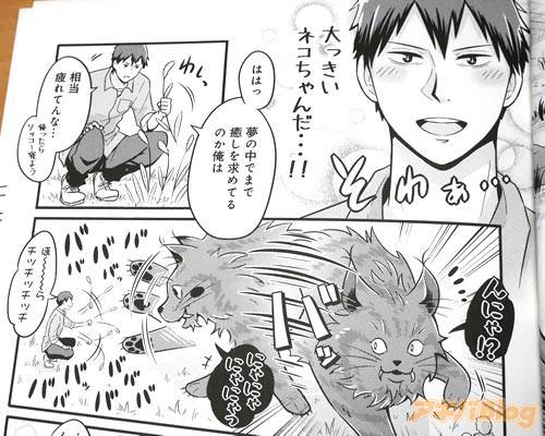 「(大っきいネコちゃんだ…!)」