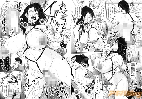 ICEの「淫姦オーディション -前編-」