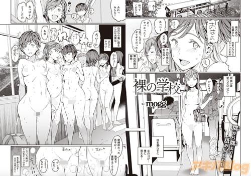 mogg「裸の学校」